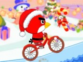Birdy Bycicle