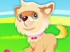 Puppy The Cutest Dog