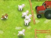 Toasty Farm