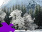 Winter In Yosemite Jigsaw