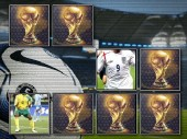 World Cup 2010: Memory Cards